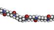 Nylon (nylon-6,6) plastic polymer, chemical structure