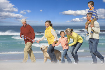 Multi-generation family walking with dog on sunny beach