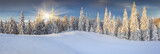 Panorama of the sunny winter landscape in the mountains - 58548802