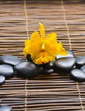 Zen rock and macro of yellow orchid on mat