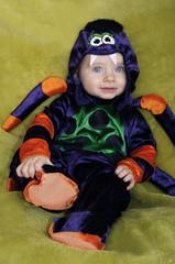 baby halloween spider