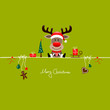 Rudolph Gift & Symbols Light Green