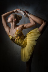 Lovely ballerina in yellow tutu