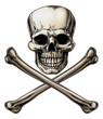 Jolly Roger Skull and Crossbones Sign