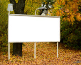 Empty billboard in autumn forest