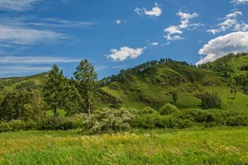 Mountains, sky, grassland