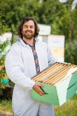 Confident Beekeeper Carrying Honeycomb Crate