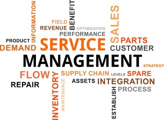 word cloud - service management