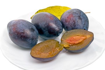 Four plums on a white plate
