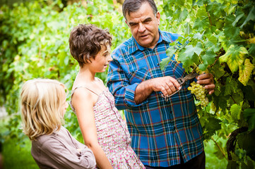 Grandfather and his grandchildren in vineyard .