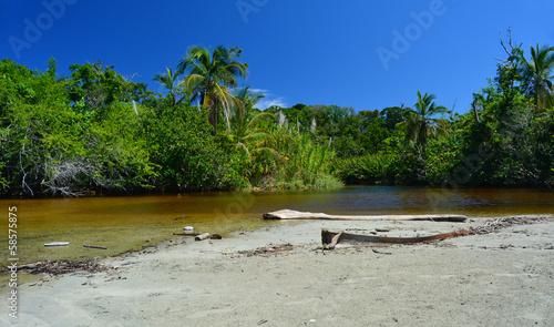 Parc national de Cahuita - 58575875