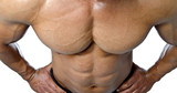 Muscular torso and pecs of male bodybuilder shot from above poster