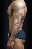 Profile view of bodybuilder torso, pecs, arm, abs poster