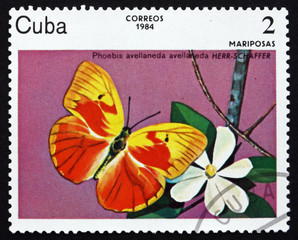 Postage stamp Cuba 1984 Red-Splashed Sulphur, Butterfly