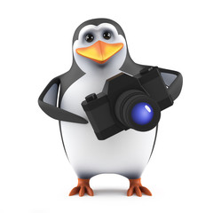 Penguin has become a photographer