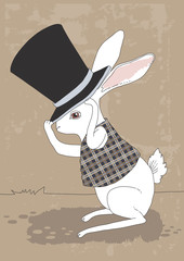 Rabbit and Top Hat