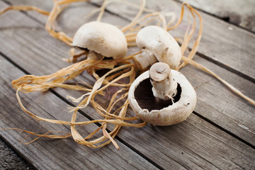 champignons on wooden desk