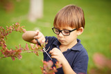 Little boy gardening outdoors