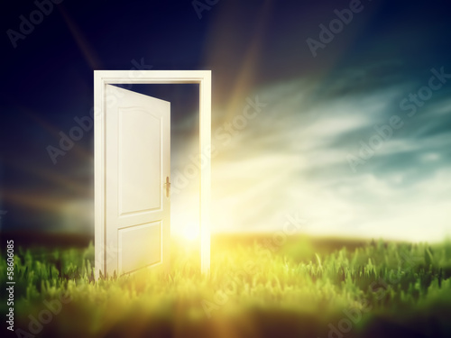 Open door on the green field. Conceptual
