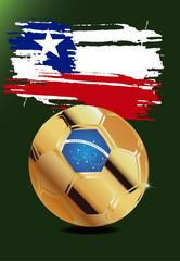 Chile in Soccer WM Brazil 2014