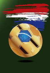 Niederlande  in Soccer WM Brazil 2014