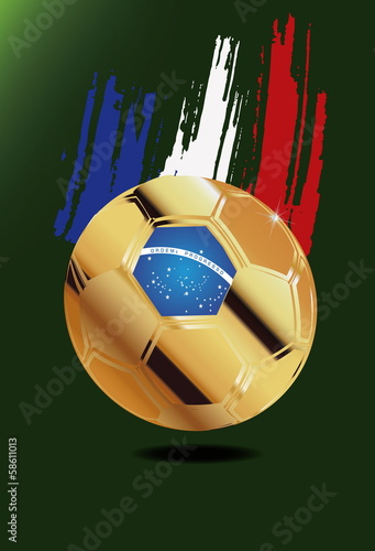 France in Soccer WM Brazil 2014