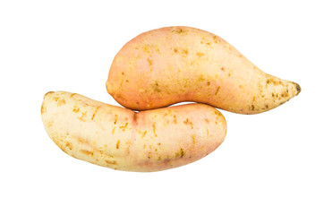 Sweet Potato over white background