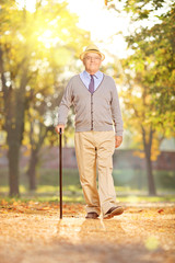 Senior gentleman walking in a park, on a sunny day in autumn