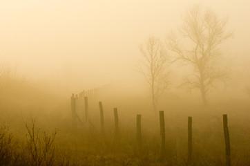 Plain landscape with fence on foggy morning