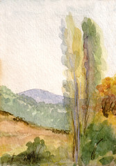 Hills and trees
