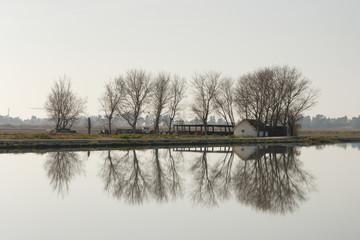 Barraca en el Delta de l'Ebre