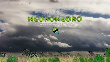 African background, Ngorongoro