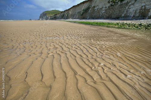 Sand dunes on sea coast at Nord-Pas-de-Calais, France