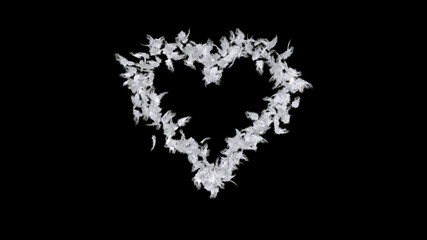Heart of feathers