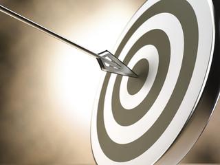 Target and arrow - sepia