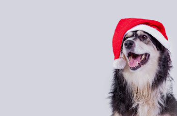 Nikolaus Hund