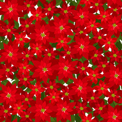 Christmas seamless background with red poinsettia flowers.