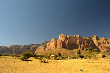 Golden ethiopian landscape