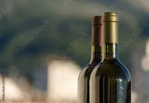 Two wine bottle necks in natural light