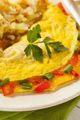 Homemade Organic Vegetarian Cheese Omelette