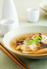 closeup of a bowl of asian wonton and vegetable soup