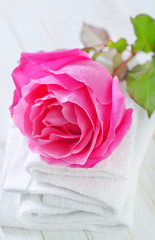 rose and towels