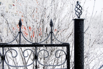Winter iron fence