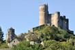 Medieval castle in Najac, Aveyron (France)