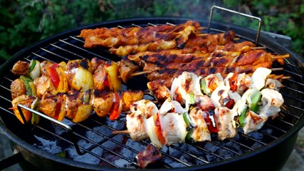 barbecue shashlik  vid 01