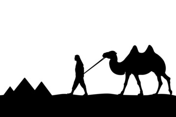 Man with camel of the pyramids.