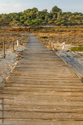 sunset scenic view of a wooden walkway