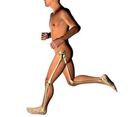 Uomo che corre ai raggi X profilo