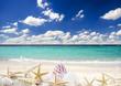 Gute Reise: Sonne, Strand, Muscheln und Seesterne :)