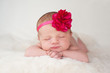 Newborn Baby Girl with Hot Pink Flower Headband - 58673879